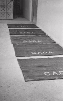 Imagen de CADA