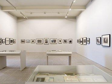 Exhibition view. Leonardo Cantero. La dehesa del hoyo, 2008
