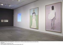 Elly Strik. Fantasmas, novias y otros compañeros, vista de sala / gallery view (imagen 4)