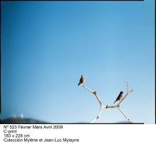Jean-Luc Mylayne: Trazos de cielo en manos del tiempo(imagen 07)