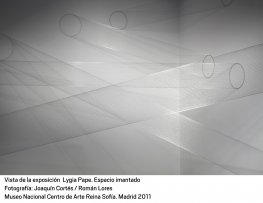Lygia Pape. Espacio Imantado(imagen 07)