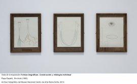 Formas biográficas, vista de sala / gallery view (imagen 9)