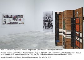 Formas biográficas, vista de sala / gallery view (imagen 3)
