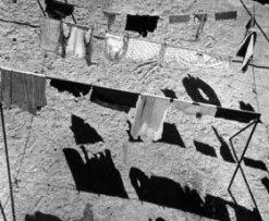 """Renovación y novedades en la Colección II. """"¿La guerra ha terminado? Arte en un mundo dividido (1945–1968)"""""""
