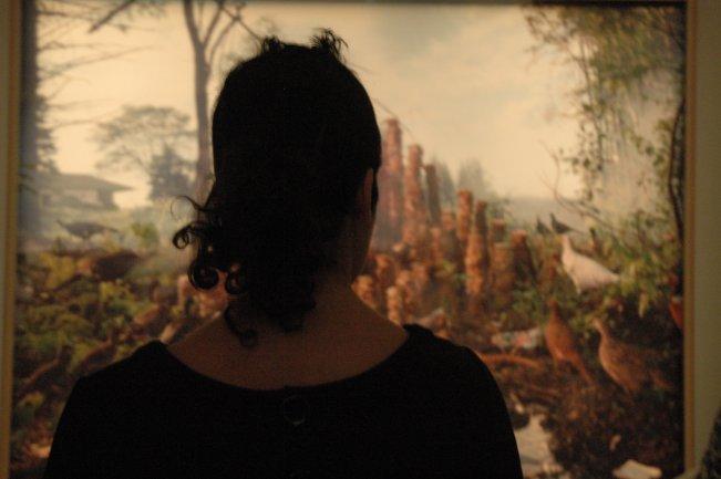 Una de las sesiones de fotomontaje. Museo Reina Sofía, 2007.
