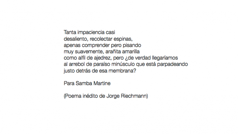 Jorge Riechmann, untitled, 2020