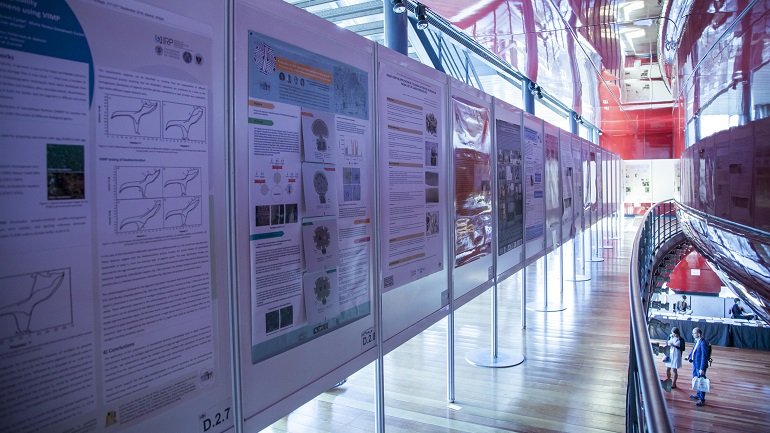 Selección de pósters antes de la poster session