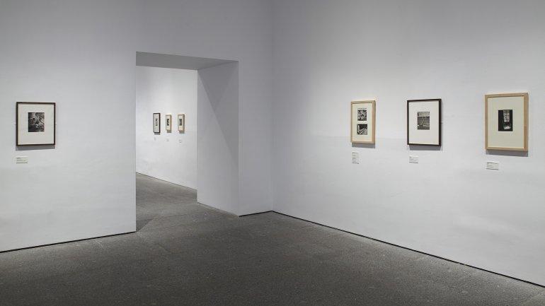 Vista de sala de la exposición Wols: el cosmos y la calle, 2014