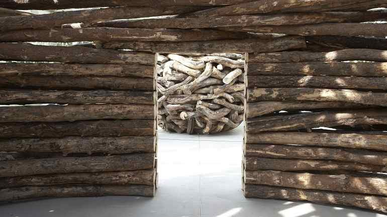 Exhibition view. Andy Goldsworthy (Inside the entrails of the tree), 2007