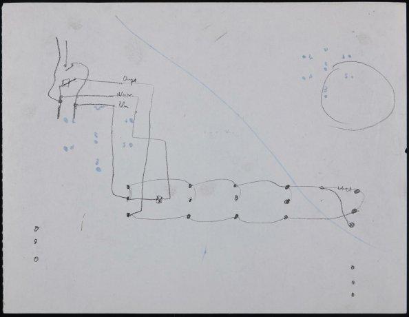 Esquema para Historia Natural (fragmento). Archivo Alexanco. Centro de Documentación
